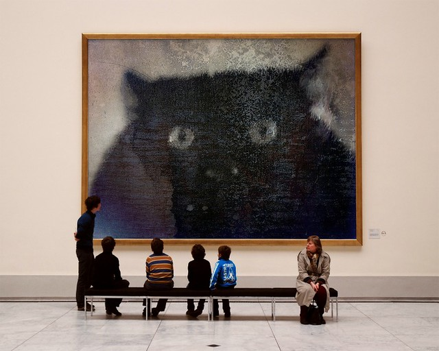 The-Cat-MAKI-PhotoFunia