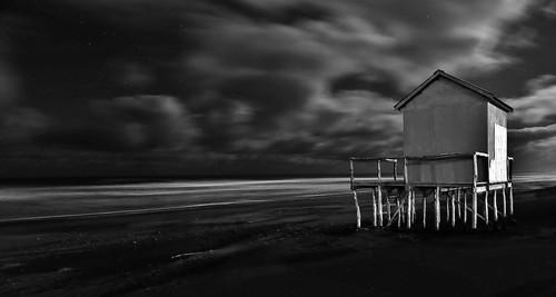Autor: FRAN KAPLO