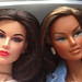 Comparison of head size between Color Infusion and other dolls. by daPistol