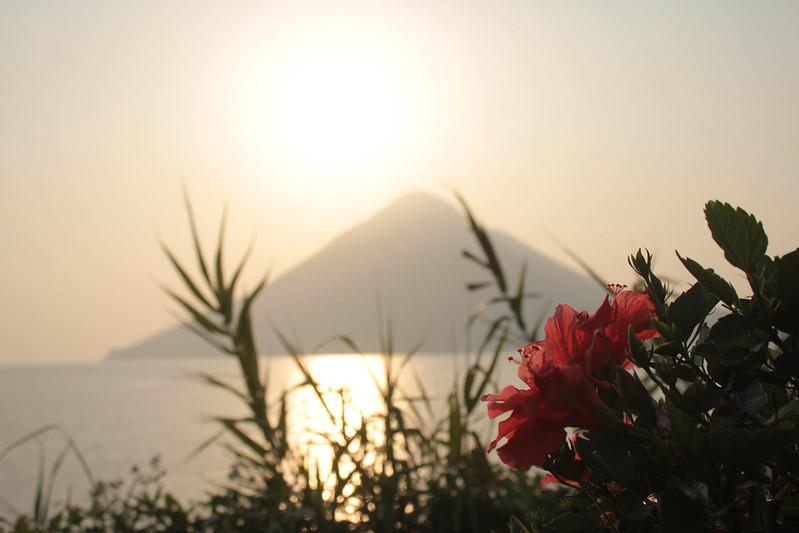 20140531-開聞岳-0576.jpg