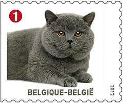 09 Animaux de compagnie timbrec