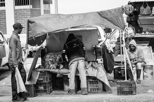 Fisherman selling fish