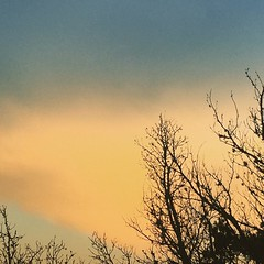 Last night's sunset II. #texas #texassunset #drippingsprings