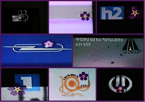 Anmoruks_on_TV