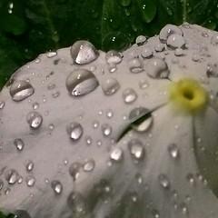 Chove intensamente no Cabo de Santo Agostinho
