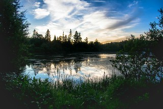 Sunset Woods Lake View Nature | by shufflepath-net