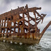 Peter Iredale Shipwreck by Samantha Decker