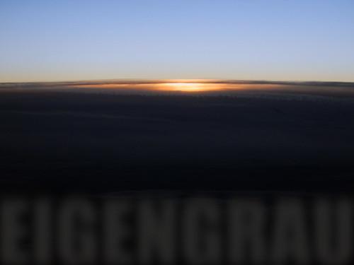 Flying into the night (eigengrau)