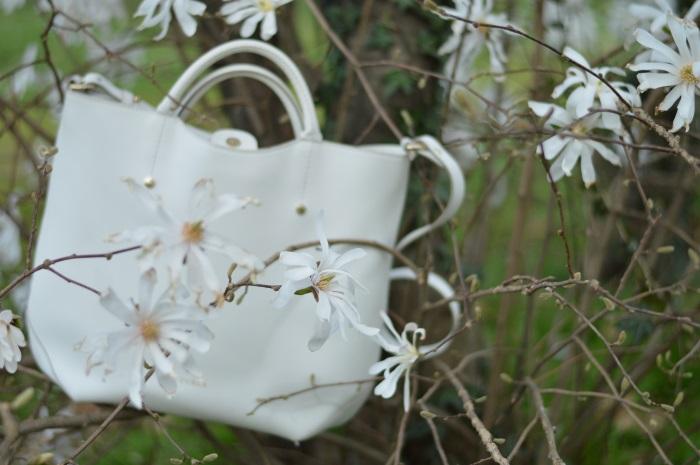 tree, magnolia, rosa, zara, wildflower girl (5)