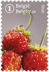 13 FRUITS OUBLIÉS timbre 5 fraises
