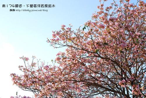 DSC_5105.JPG