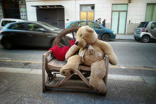 L'attesa in solitudine si assoccia ad un #orso by Ylbert Durishti