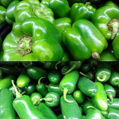 pea(0.0), plant(0.0), cayenne pepper(1.0), chili pepper(1.0), bell pepper(1.0), vegetable(1.0), serrano pepper(1.0), peppers(1.0), bell peppers and chili peppers(1.0), bird's eye chili(1.0), peperoncini(1.0), green(1.0), produce(1.0), fruit(1.0), food(1.0), pimiento(1.0), jalapeã±o(1.0),