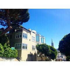 Sunny - #telegraphhill #SanFrancisco #sfo #architecture #latergram #bayarea #california #skyscrapers