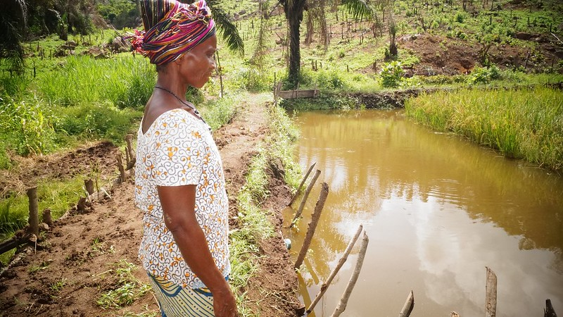 A woman beside a fish pond in Sierra Leone. Photo by Success Kamara