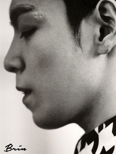 fromtop-scans-by-brin (40)