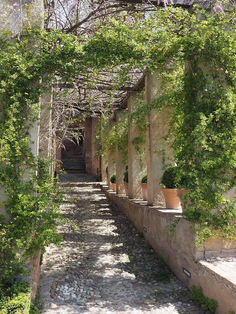 364 - Alhambra
