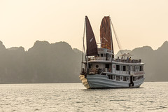 Halong Bay - Cruise at sunset