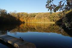 Prairie Woods Enviromental Learning Center, Autumn 2016