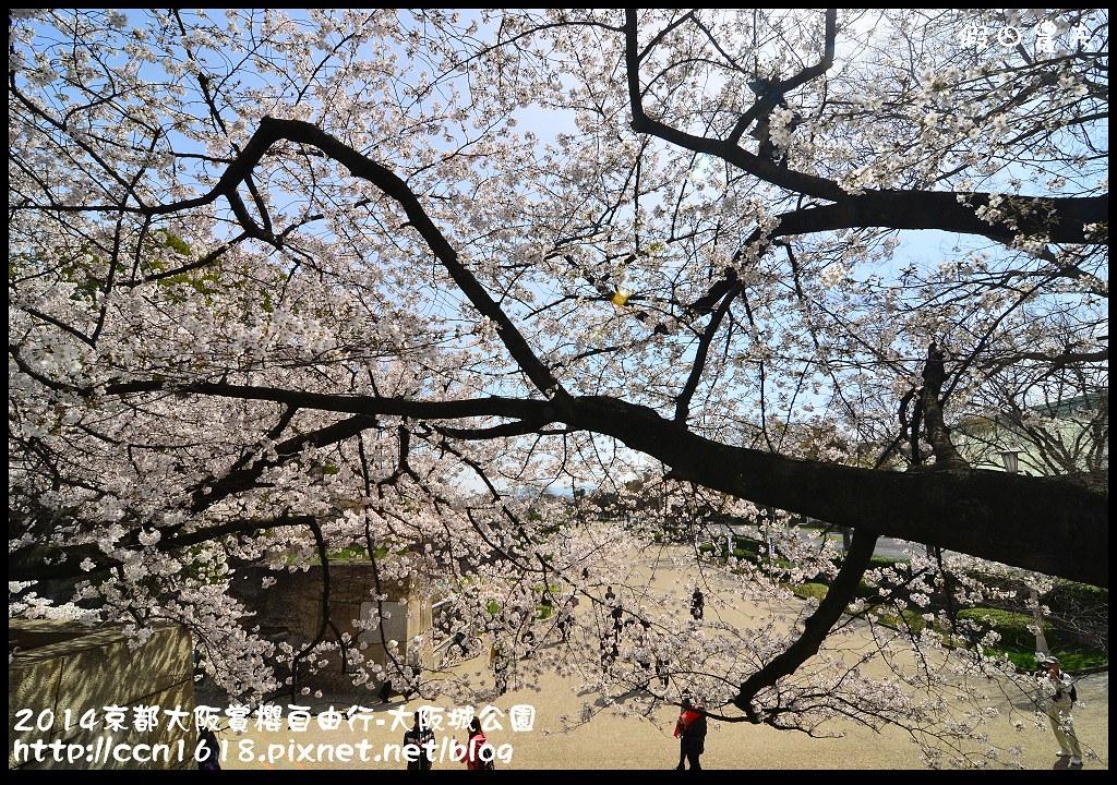 2014京都大阪賞櫻自由行-大阪城公園DSC_1847