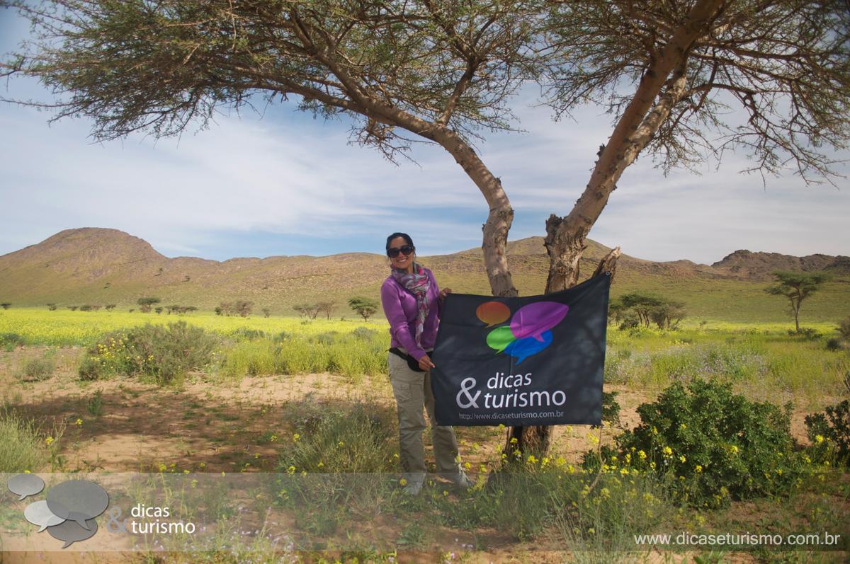 Tour Deserto: Dia 3 - 12