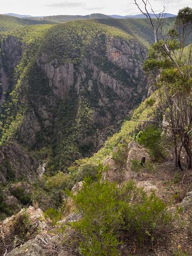 australian australia roadtrip victoria alpine vic gorge alp ontheroad snowymountains littleriver greatdivide greatdividingrange australianalps billdoyle littlerivergorge snowyrivernationalpark deepgorge tripdec14jan15