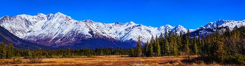 Moose Meadow with Chugach Mountains  Girdwood, Ak