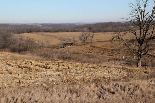 Mount Ida, Wi- Rugged farm fields
