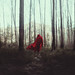 Alone in the woods by Mike Alegado