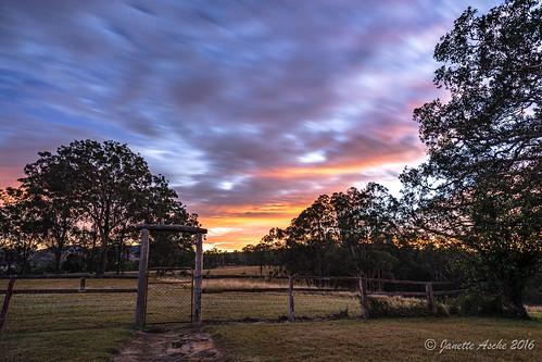 2016 australia jacksplace qld queensland sonya7r scenicrim seqld winter hff fence gate sunrise clouds trees rural country farmland le