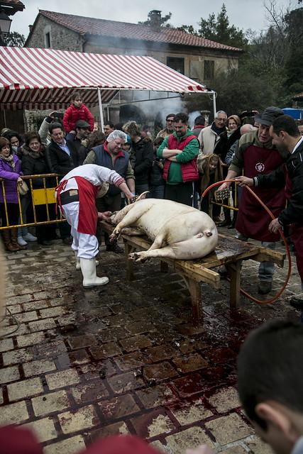 Fiesta de la Matanza de Liérganes