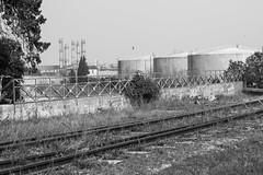 Port de Saint Gilles : lignes de fuite