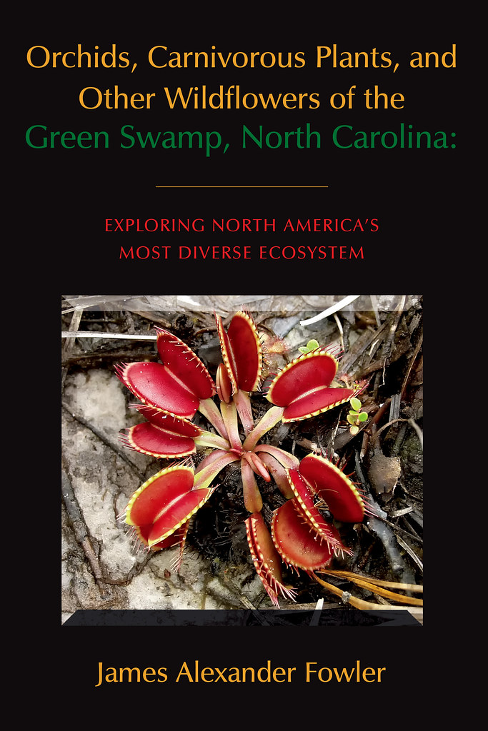 Cover of the Green Swamp book