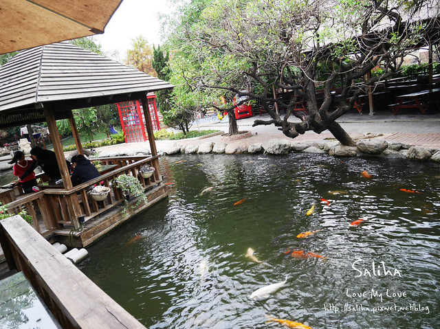 高雄ㄧ日遊景點餐廳動物園淨園 (18)