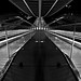 Guillemins / lines and reflections by jo.misere