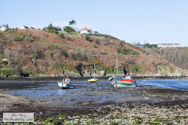 Fishing boats on Fishguard Bay