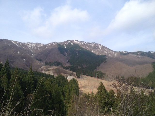 国見林道より虎子山