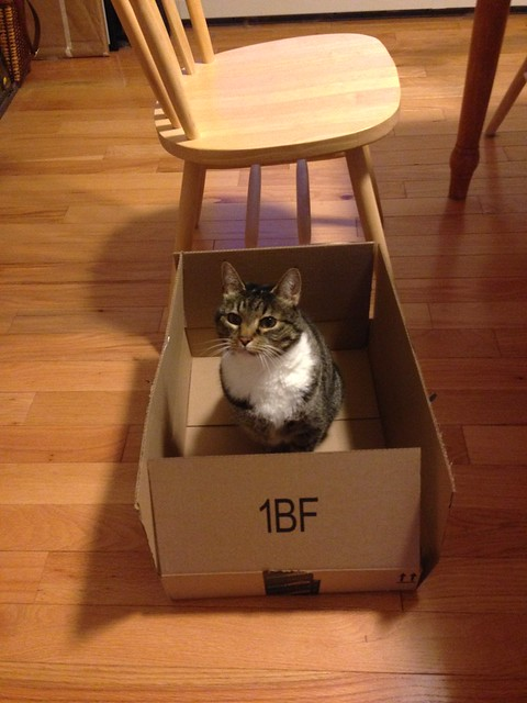 MF in a box