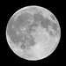 Full Buck Moon IMG_4676