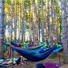 Happy #nationalhammockday to all from a hammock's happiest place on earth, @electric_forest