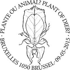 09 Plante ou animal Bxl1050 F