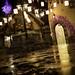 Rapunzel Potty - Night by gifford_gail