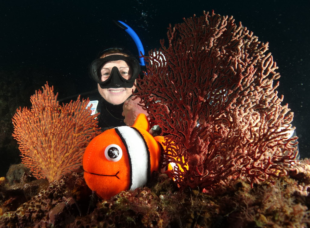 Jayne and Nemo at Bass Point 3rd April 2015