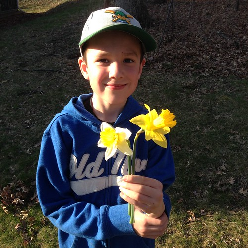 Daffodils for Mama