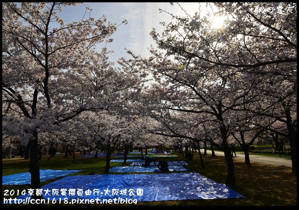 2014京都大阪賞櫻自由行-大阪城公園DSC_1688