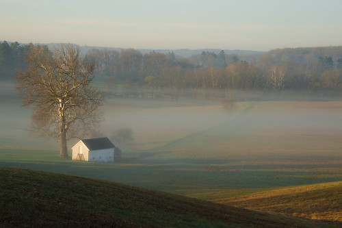 morning fog sunrise landscape outdoor pennsylvania foggy hills serene nationalparks rolling valleyforge nikondf
