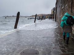 aqua alta Venise