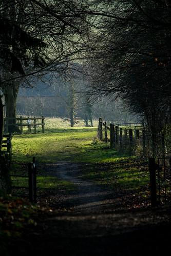 20141231-62_Braunston - Jetty Fields