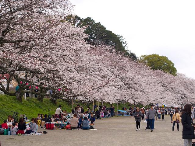 150328_Shizuoka2day 3