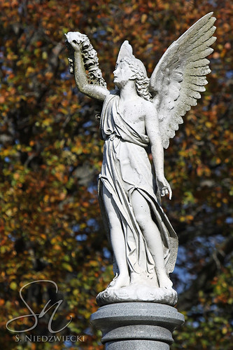 Cemetery Angel 4260-15